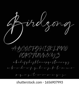 Best Alphabet Birdsong Amazing Script Signature Logotype Font lettering handwritten