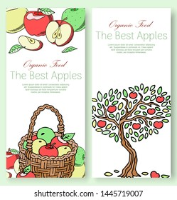 Best apples fruit collection set of banners vector illustration. Bright colorful orchard or garden product. Healthy fresh and organic food. Apple of different color and shape.