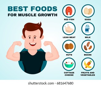 Best foods for muscle growth infographic.Vector flat cartoon illustration. Isolated on blue background.Health food,diet, products, fitness, sport, bodybuilding nutrition, nutriment infographic concept