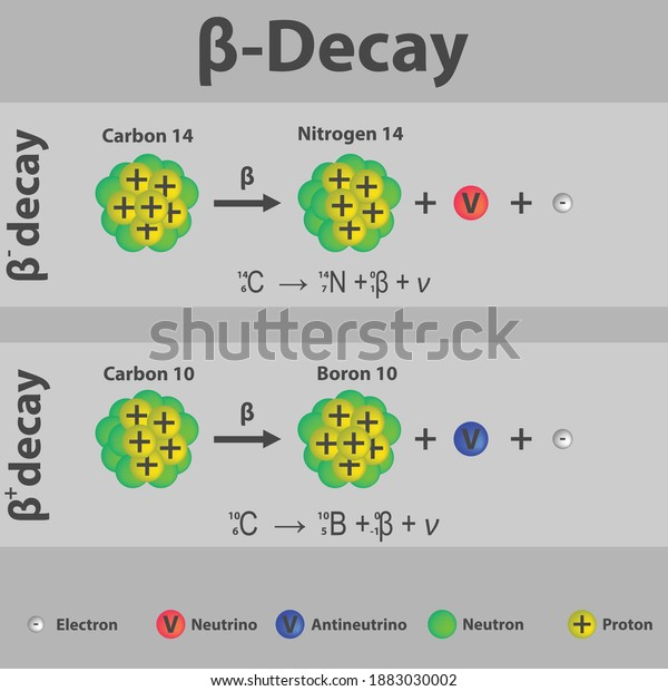 beta-plus-minus-decay-carbon-600w-188303