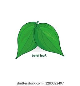 a betel leaf