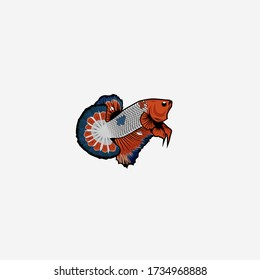 betta fish illustration, aquatic animals