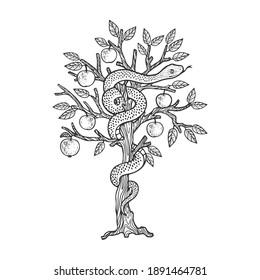 biblical serpent snake on apple tree sketch engraving vector illustration. T-shirt apparel print design. Scratch board imitation. Black and white hand drawn image.