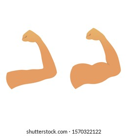 Biceps muscles on a strong and weak arms. Before and after the fitness training result. Human body icon. Sport and achievement concept. Vector illustration.