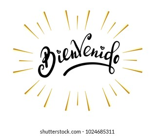 Bienvenido - welcome in Spanish , Hand sketched card Bienvenido. Hand drawn Bienvenido lettering sign. Invitation, banner, postcard. Vector illustration