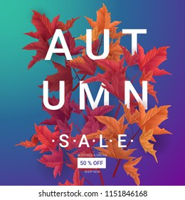 Big Autumn sale. Fall sale trendy design template. Can be used for flyers, banners or posters. Vector illustration with colorful autumn leaves