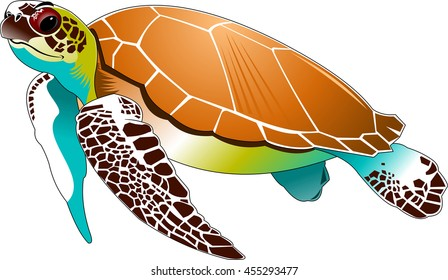 big beautiful sea turtle swimming in the sea, vector