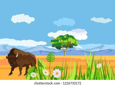Big bison in the american prairie, wildlife landscape grass vector concept illustration