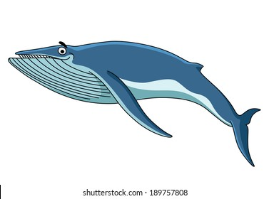 Big blue baleen whale swimming through the sea, cartoon illustration isolated on white