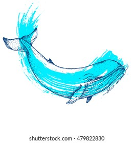 Big blue whale - vector hand drawn abstract illustration. Huge swimming aquatic mammal ink sketch with paint on background