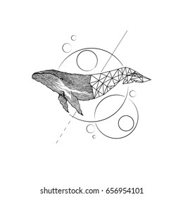 Big blue whale - vector hand drawn illustration. Huge swimming aquatic mammal ink sketch. whale half POLYGONAL GEOMETRIC
