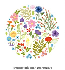 Big botanical set with spring and summer flowers, cornflower, chamomile, rosehip, rose, berry. Garden, forest, field flowers. Decoration