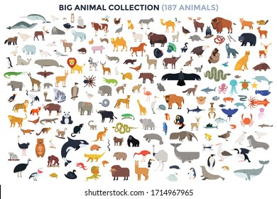Big bundle of funny domestic and wild animals, marine mammals, reptiles, birds and fish. Collection of cute cartoon characters isolated on white background. Colorful vector illustration in flat style.