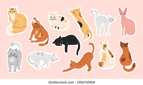Big bundle of stickers with sleeping, funny, cute cats. Pins set of domestic pets, collection of washing kitty, hand drawn modern flat cartoon illustration in pastel colors isolated on pink background
