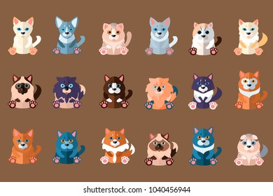 Big cats collection. Domestic animals. Home pets. Siamese, abyssinian, ragdoll, norwegian, sphynx, scottish, devon, singapura, savannah, burmese and other. Flat vector
