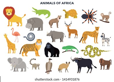 Big collection of adorable wild animals of Africa. Bundle of cute funny exotic cartoon African mammals, reptiles, birds isolated on white background. Colorful vector illustration in flat style.