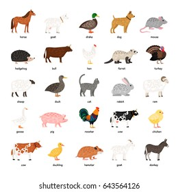 Big Collection of Farm Animals: rooster, duck, donkey, cow, bull, pig, horse, etc.