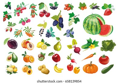 Big collection of fruits, vegetables and berries. Vector illustration. Natural vitamins