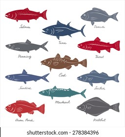Big collection of marketable fish symbols. Vector set.