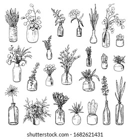 Big collection of varied vases, bottles, and jars of flowers and plants. Hand drawn vector illustration. Vintage botanical set. Decorative floral outline elements isolated on white. Usable for design.
