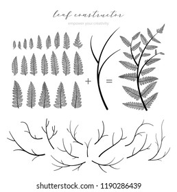 Big collection of vector branch and leaf, autumn, spring, summer. Detailed macro illustration, not autotrace, constructor design, fern
