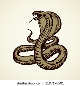 Big curve creepy viperidae crotalus asp serpentine on white backdrop. Outline black ink hand drawn zoo pictogram emblem logo sketchy in art retro doodle style pen on paper space for text. Closeup view