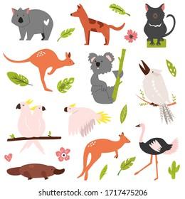 Big flat set of Australian famous animals koala, ostrich, kangaroo, platypus etc
