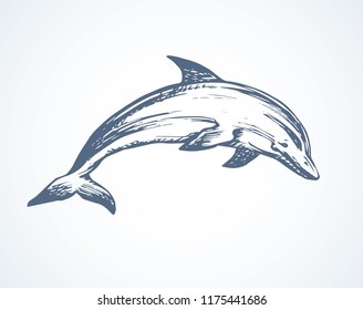 Big fun cheerful cetacean breach on light backdrop. Outline dark ink hand drawn funny pet pictogram logotype emblem sketchy in art retro engrave doodle style pen on paper space for text. Side view
