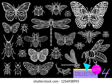 Big hand drawn line set of insects bugs, beetles, honey bees, butterfly; moth, bumblebee, wasp, dragonfly, grasshopper. Silhouette vintage sketch style vector illustration. Black background, outline.