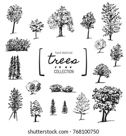 Big hand drawn trees collection. Vector sketch of oak, ash, birch, spruce, bushes, linden, maple, apple tree. Ink silhouettes of trees. Nature and parks design elements.