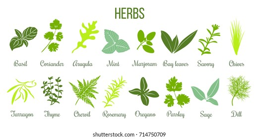 Herb Images Stock Photos Vectors Shutterstock