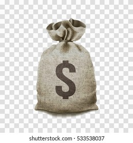 Big Money bag on a transparent background