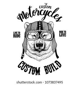 Big polar bear, White bear Biker, motorcycle animal. Hand drawn image for tattoo, emblem, badge, logo, patch, t-shirt