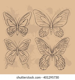 Big realistic collection of colorful butterflies. Ornithoptera croesus and goliath, papilionidae rumanzovia and ulysses, summer flying insects set for greeting cards and  scrapbook vector