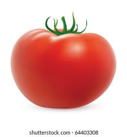 Big ripe tomato on white background. Created using gradient meshes.