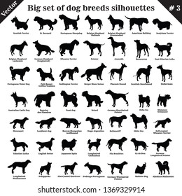Big set of 49 different dogs, hounds, working, shepherd, terrier, companion, hunting. Vector set of dogs standing in profile. Isolated dogs breed silhouettes set in black color on white background. №3