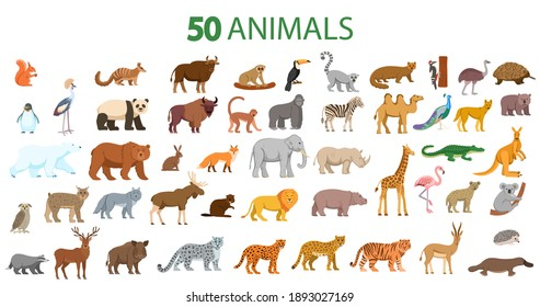 Big Set of animals. Animals from different countries of europe, asia, africa, america isolated on white background.Vector illustration in flat cartoon style.