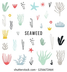 Big set of colorfull seaweed hand drawn and cut out of paper. Vector illustration.