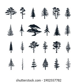 Big set of forest trees silhouettes. Vector isoleted icons of pine, fir, cedsar, oak.