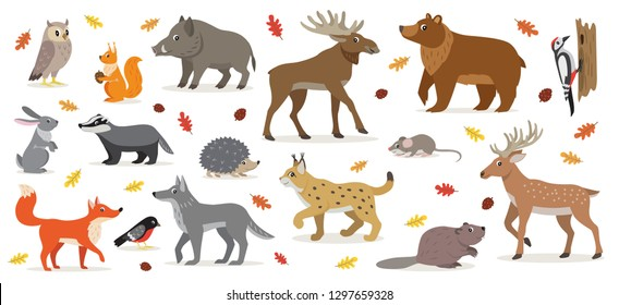 Big set of forest woodland animals isolated on white, owl, squirrel, hare, bear, fox, wolf, badger, hedgehog bullfinch, moose, deer, lynx, boar beaver colorful woodpecker and small mouse vector