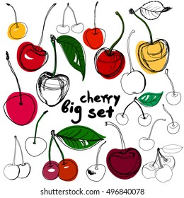 big set of hand drawn cherry. Two summer cherries with petal. Great graphic collection in natural style.