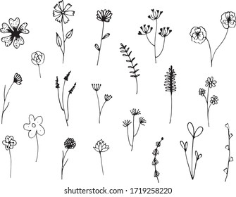 Big set of hand drawn floral vector with leaves and branches,Floral sketch collection. Decorative elements for design.
