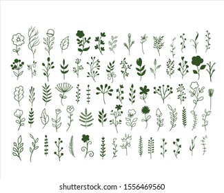 Big set of hand drawn vector flowers and branches with leaves, flowers, berries. Floral sketch collection. Decorative elements for design