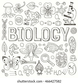 Big set of hand drawn vector biological icons, isolated on white background.