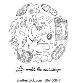 Big set with microscope and different microorganisms. Vector illustration