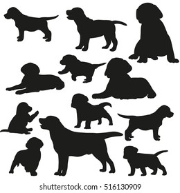 big set of silhouettes of dogs and puppies, vector