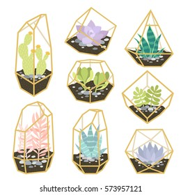 big set of simple geometric terrariums with plants. geometric terrariums with succulents and cactus. can be used like stickers, pins, patches or for posters and greeting cards