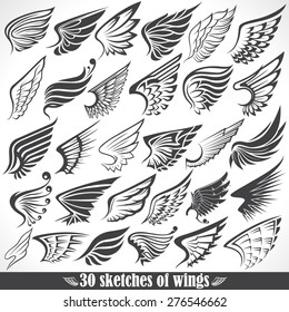 Big Set sketches of wings