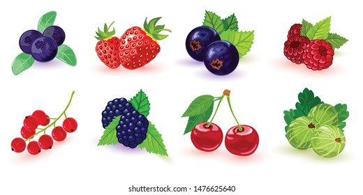 Big set of summer ripe berries picking in garden or forest. Blueberry, blackberry, gooseberry, red and black currant, raspberry, strawberry, cherry with leaves. Cartoon icons isolated on white.