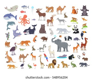 Big set of wild animals cartoon vectors. African, Australian, Arctic, Asian, South and North American fauna predators and herbivorous species.  Aquatic animals, fishes, tropical birds isolated icons